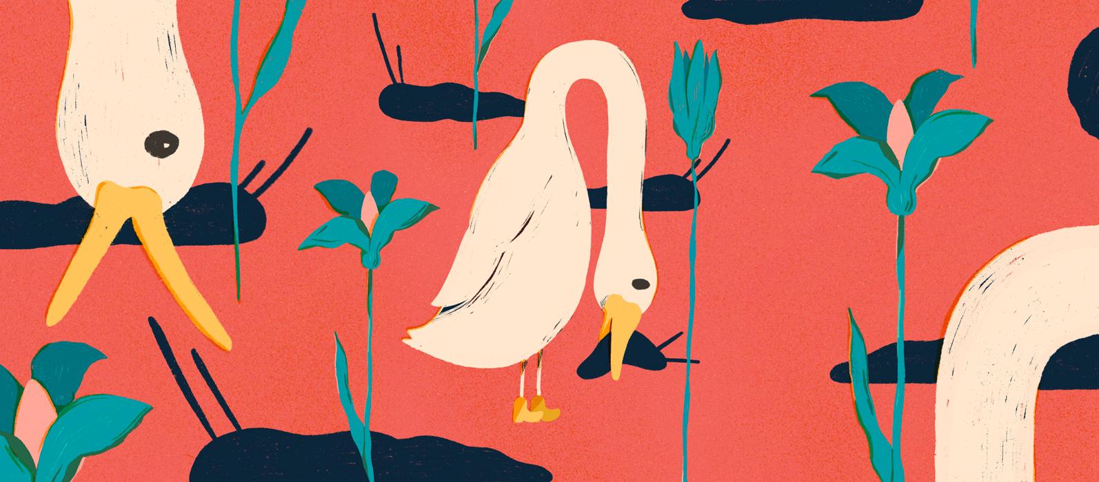 duck eating killer slug illustration